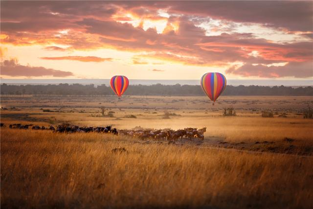 你不知道的非洲 野性与奢华并存的肯尼亚,一生必去一次