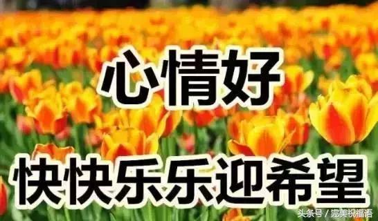 今天9月2日,亲爱的朋友,新的一天,祝你幸福!健康!吉祥!