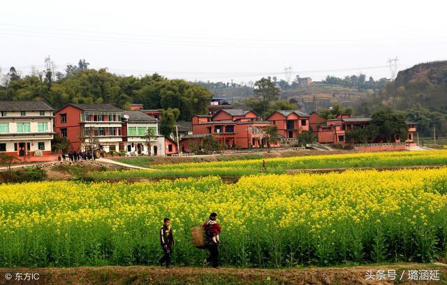 阜阳生态园