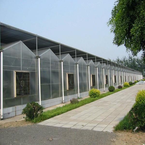 阳光板温室-百科