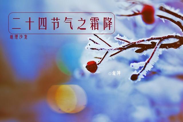 农历二十四节气之霜降:时逢秋暮露成霜,霜叶红于二月花