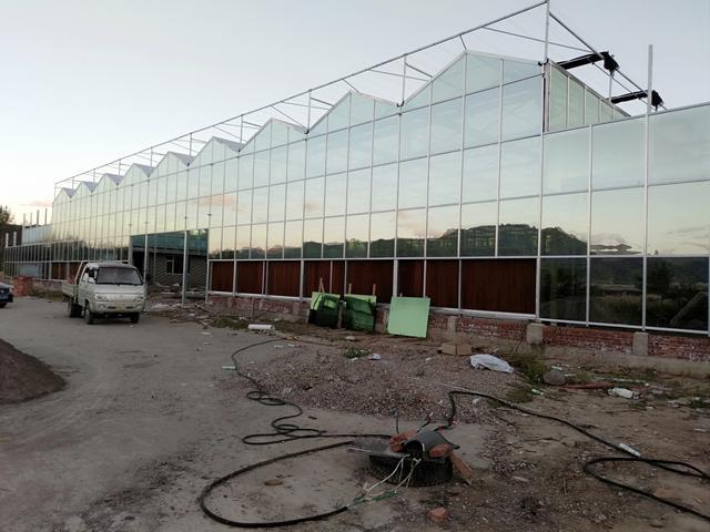异形尺寸纹络型玻璃温室大棚设计案例参考