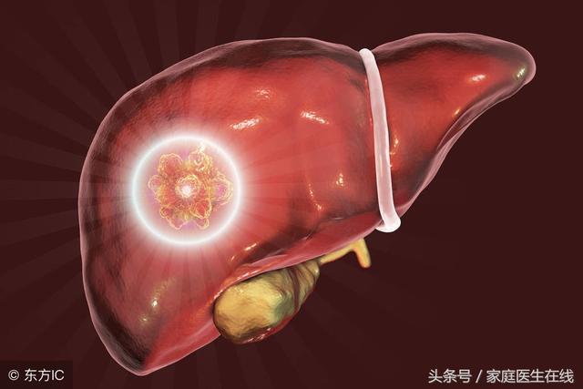 保护肝脏多吃四种食物