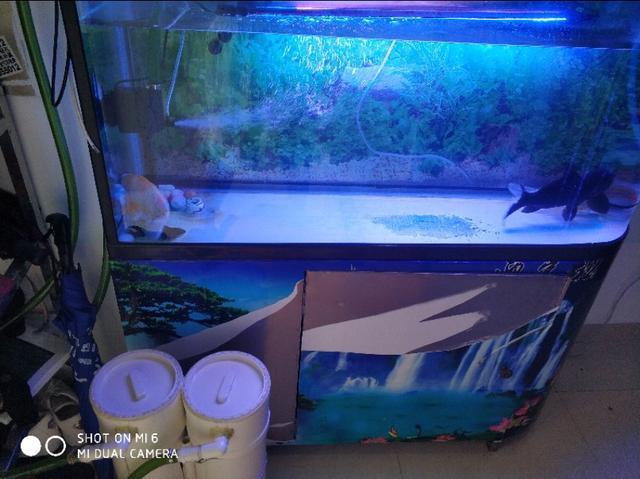 鱼缸下过滤系统图解