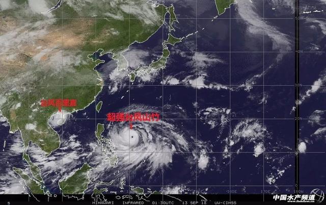 湛江台风排名