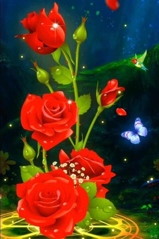 高清花朵露珠手机壁纸
