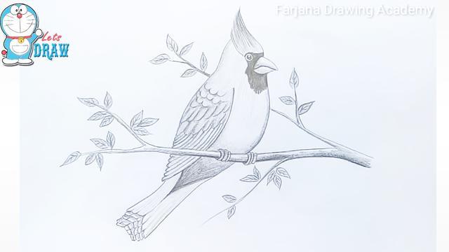 几分钟教你画一只鸟 的简笔画教程!