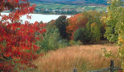 关于秋天美景的作文儿怎么写300字