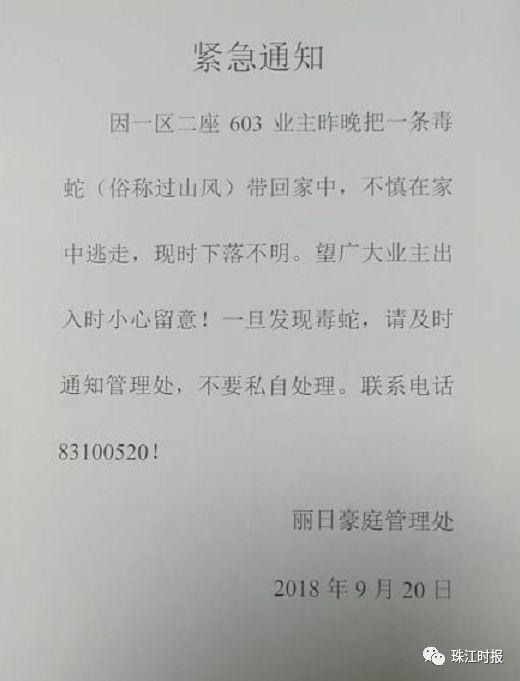 【山王蛇】_山王蛇厂家_山王蛇批发市场 - 阿里巴巴