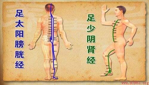 中医经络常识:足少阴肾经——先天之本,生命之源