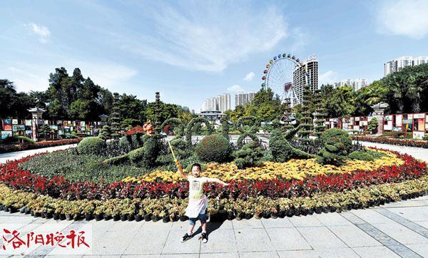 十月,第十一届洛阳王城金秋菊展将亮相王城公园!