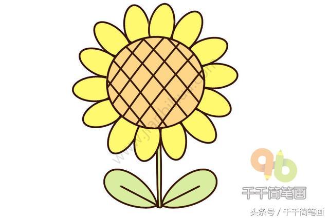 81种花朵简笔画手帐小素材,学会这些,再也不担心不会画花朵了