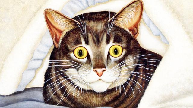 猫身上都有哪些寄生虫_快速问医生
