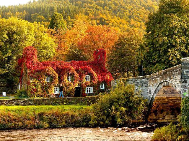 秋天美景意境图片_萧瑟的秋天意境_风景壁纸_