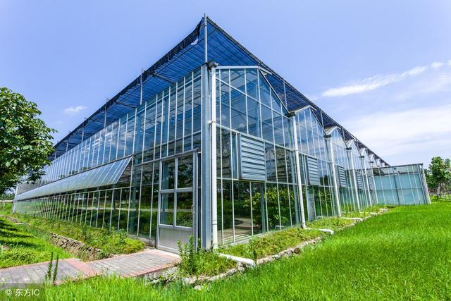 一亩地的连栋温室大棚价格是多少,有哪些优缺点呢