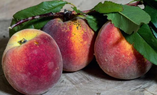 大量上市!比苹果还养人,7月吃它补气养血!很多人吃错反伤身