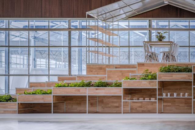 什么是全阳光板温室大棚,北方地区钟爱这种硬塑料大棚多少钱一亩