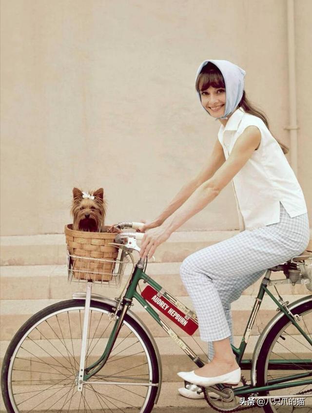网红头巾戴法