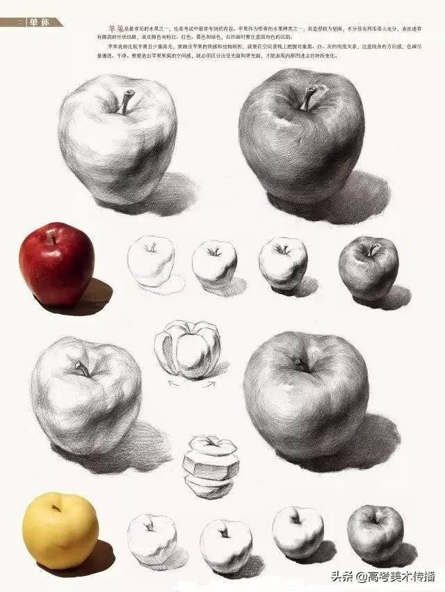 2017年吉林联考素描静物考题及范画-51美术网