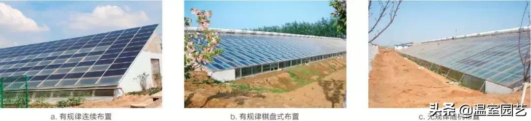光伏板+温室大棚,多样化的布置形式,应有尽有