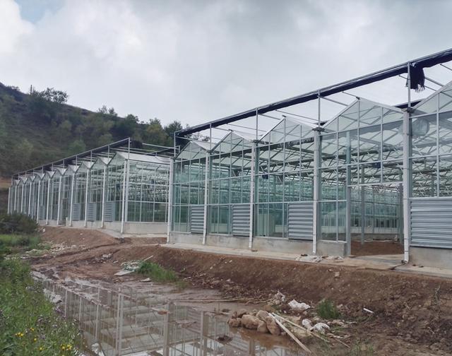 什么是现代化的温室大棚?农业园区做一个现代化温室大棚要多少钱