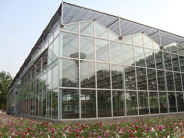 塑料薄膜日光温室大棚