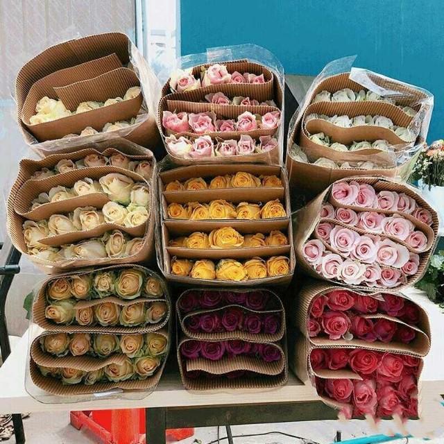 最新广州花卉市场价格、批发报价、价格大全 - 阿里巴巴