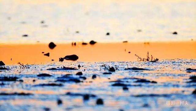 宿鸭湖_宿鸭湖在哪里_历史地名_词典网