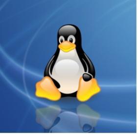 整理常用Linux命令以及软件安装方式(附mysql安装执行脚本)