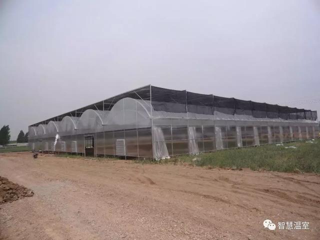 薄膜温室大棚