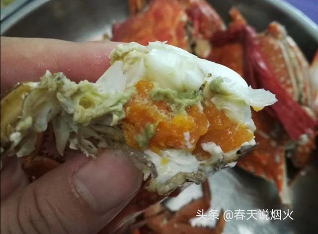 螃蟹图片大全图片
