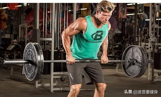 健身没那么危险!新手健身也可以做这些动作,各部位训练动作推荐