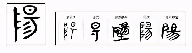 太极阴阳鱼纹身