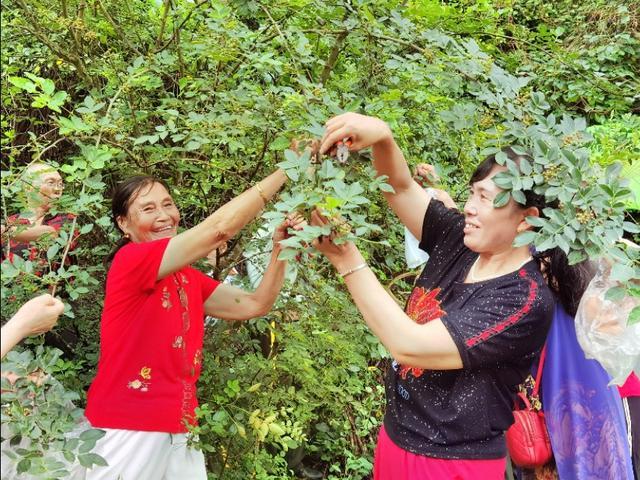 湖北宜都:老农民在家举办花椒采摘节,一台露天歌舞慰劳乡亲