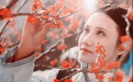 《红楼梦》中金陵十二钗不同的性格,不同的人生