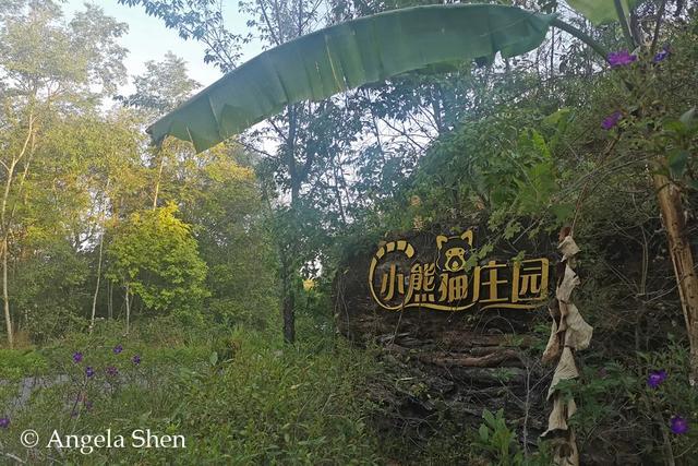 云南的夜探,才是中国夜探活动的王炸