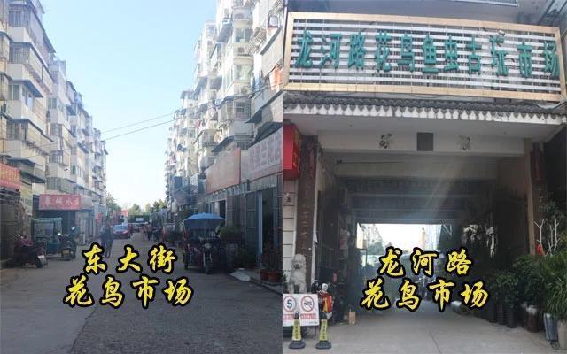 吳江高新路地圖