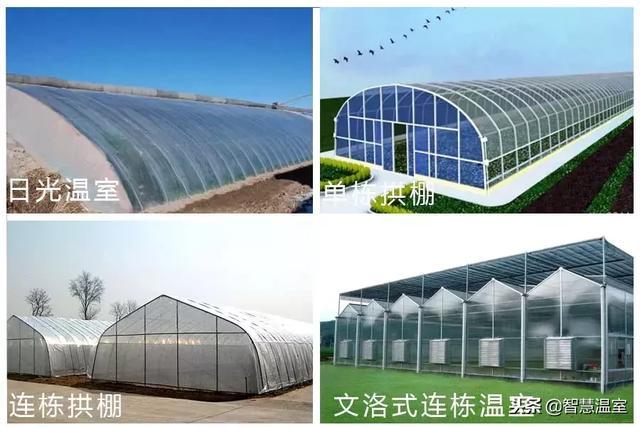 一亩蔬菜温室大棚造价多少钱?