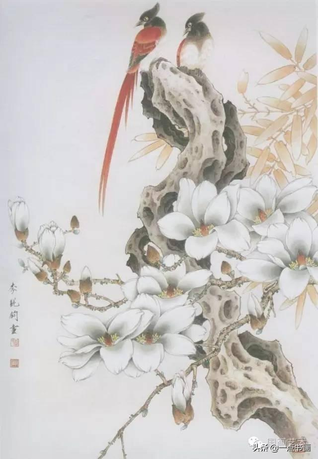 100种玉兰花画法