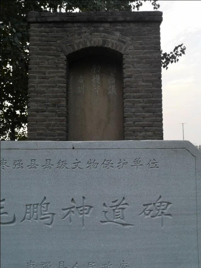 曾祥裕风水团队赴衡水枣强考察毛鹏墓地谈平洋龙风水