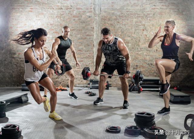 減脂塑形,徒手運動20分鍾相當於跑步1小時,讓你甩掉贅肉瘦全身