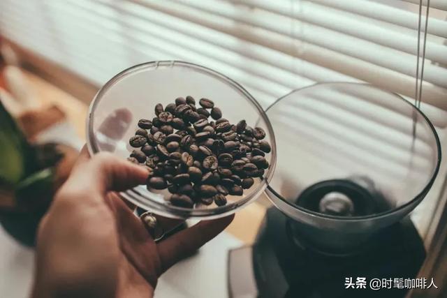 咖啡入门的这些最基本知识,你需要了解