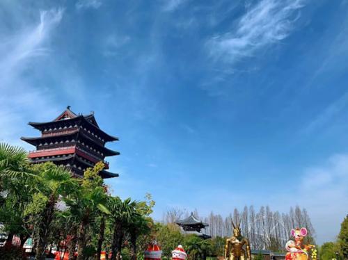 阜阳生态园梅园美景宜人游客多
