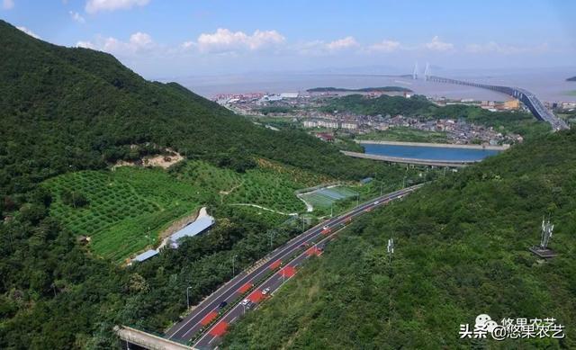 宜宾南溪:发展观光休闲农业循环经济显成效