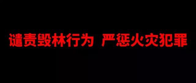 绛县/平定/朔州等地 十起森林火灾案件成功告破 _手机搜狐网