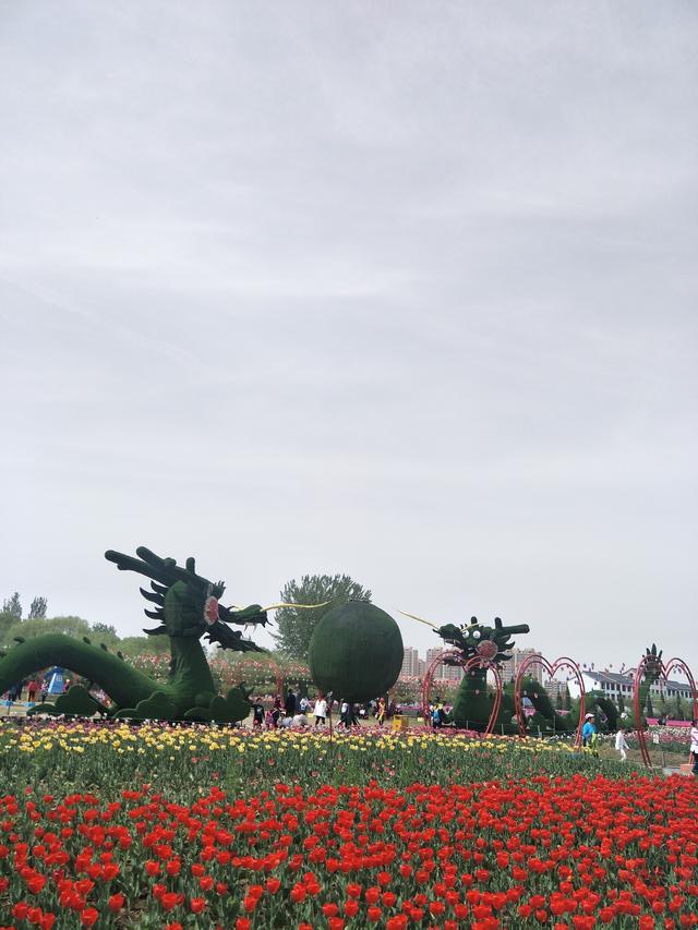 山东兰陵:农业公园景美游人多