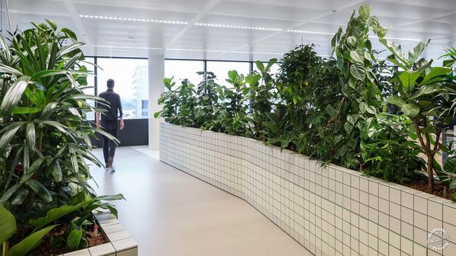 公司办公室环境图片