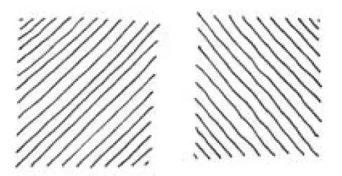素描三个静物图片