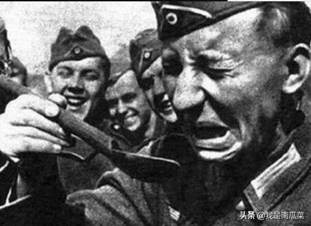 二战中意大利真是来搞笑的吗,士兵——你们才傻