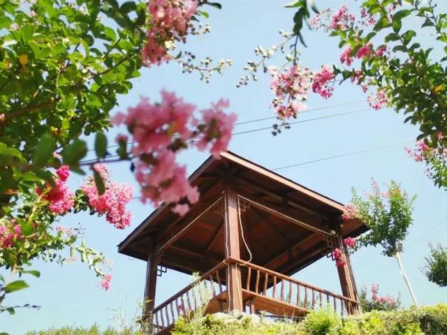 8月8日—12月31日,英山四季花海景区对全国游客免门票开放